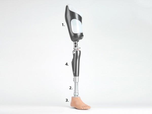 Been Prothese Onderdelen